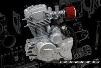 Engine. 300. ACE. Over Head Cam (OHC)
