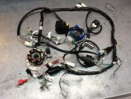 Chaly or DAX 12V conversion wiring kit