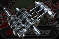 Gearbox kit Z190 5 speed 15mm needle roller type