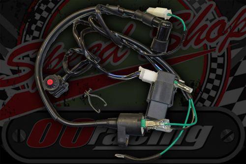 Loom Electrics kit. CDI. Ignition STANDARD