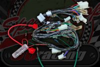 Wiring loom Monkey Skyteam Euro 4 EFI type